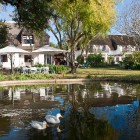 wedgeview-country-house-and-spa-stellenbosch-accommodation-ducks-on-pond