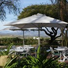 wedgeview-country-house-and-spa-stellenbosch-garden-8