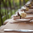 wedgeview-country-house-and-spa-stellenbosch-wedding-8